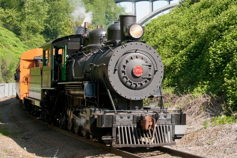 Schedule and Fares | Mt Rainier Railroad & Logging Museum