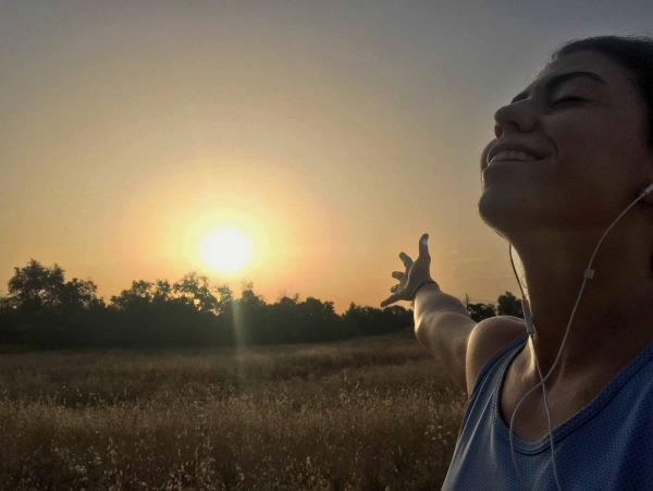 mindfulness mtraining minerva