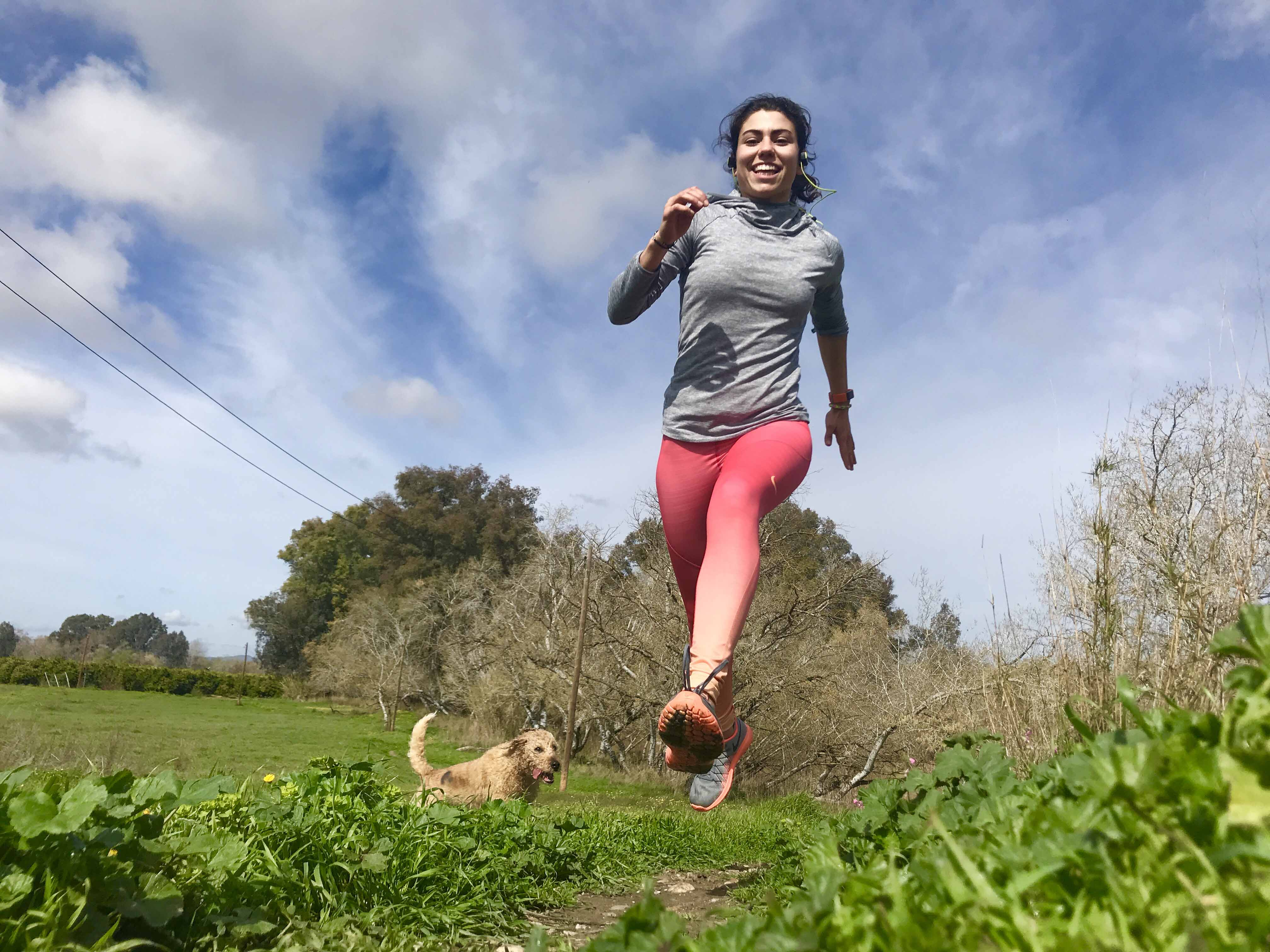 correr mtraining minerva