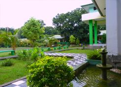 taman 12