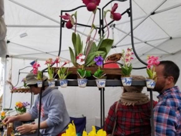 Kimmy J hosts a clay-based flower booth at PumpkinFest in Franklin, Tenn. on Oct. 28, 2017. (Gerardo Palacios / MTSU Sidelines)