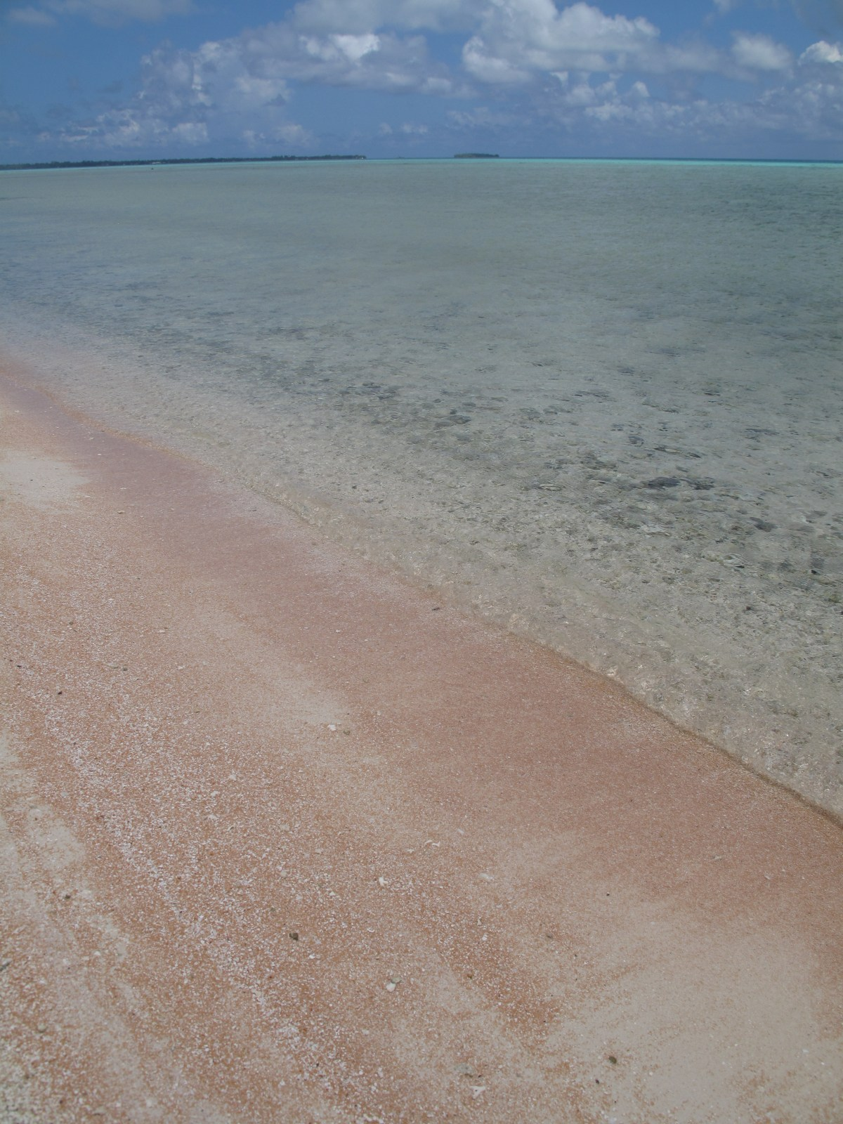 Tikehau pearl beach resort French Polynesia pink sand