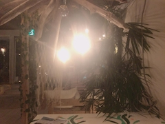 神田キャバクラ【ムーミン(mu-minn)】東京JK制服ラウンジ みどり バイト先の忘年会