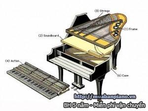 cau-tao-dan-piano-2