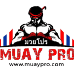 Muay Thai Guide In Thailand