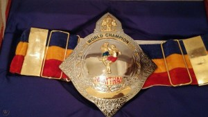 Muay Thai Belt