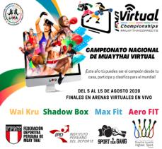 Virtual Championships 6