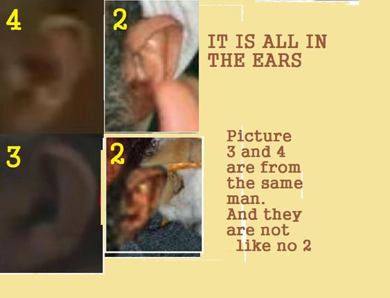 SMALL_it was all in the ears1.jpg
