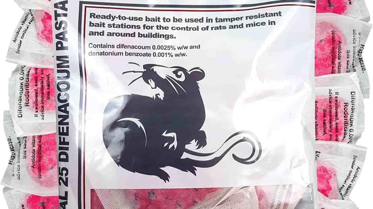 شركات مكافحة الفئران