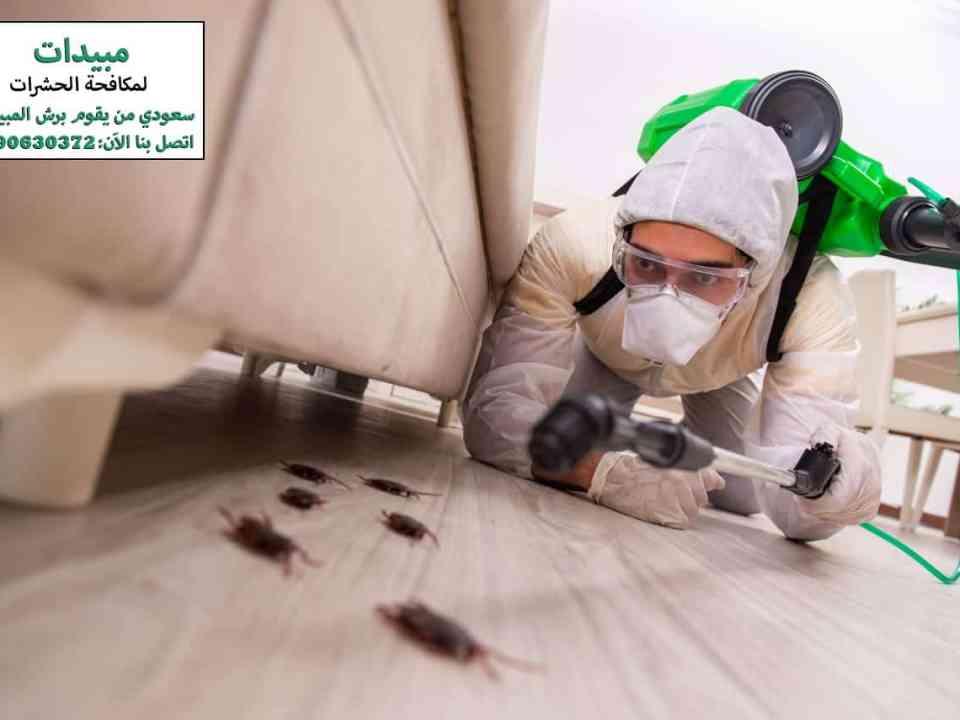 اختيار شركة مكافحة الحشرات