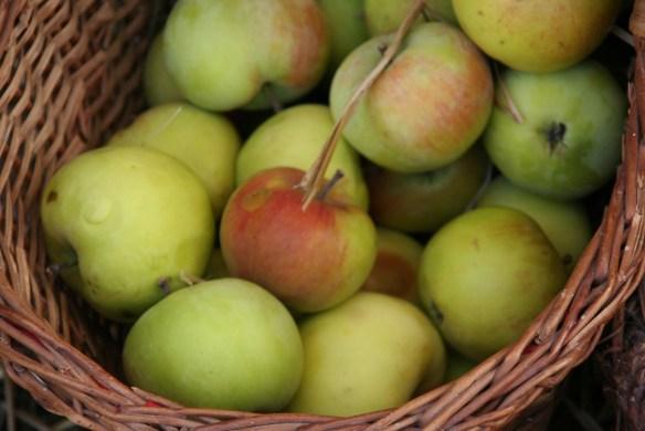 Äpfel1
