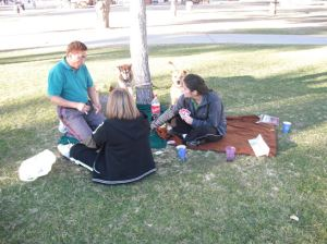 new-years-day-at-the-park-playing-cards-and-reading