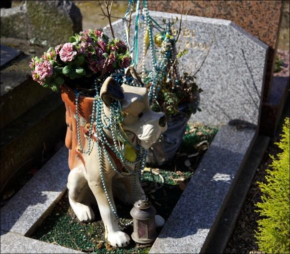 The grave of 'Bibi'; Steve Sampson