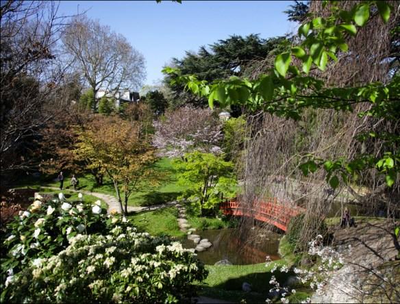 Albert Kahn garden, April; pic: Steve Sampson