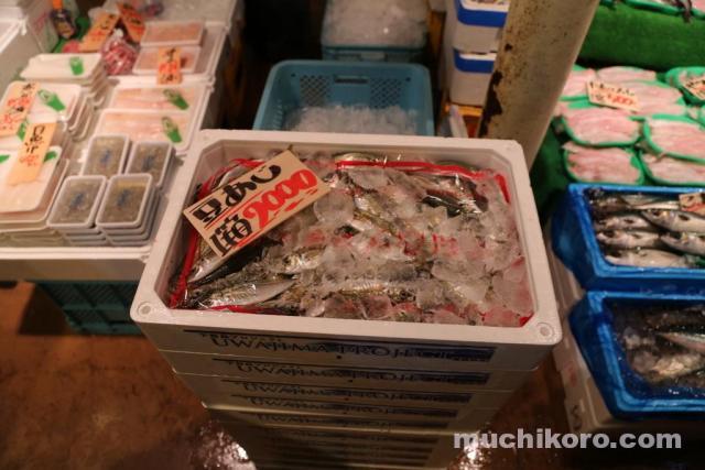 三崎朝市 豆アジ