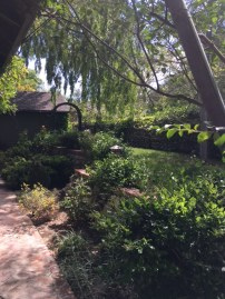 Side of the yard
