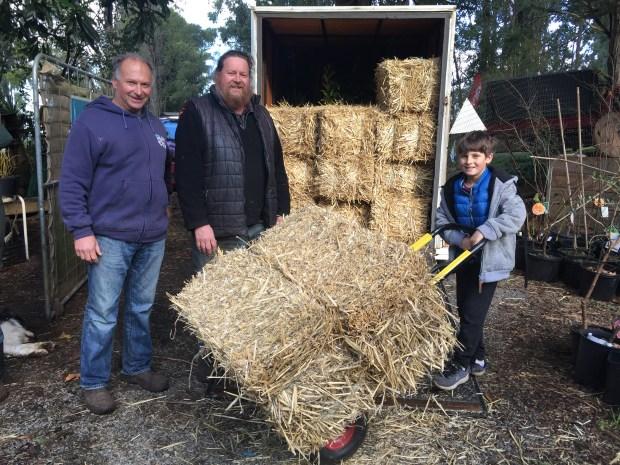 Markus loading hay