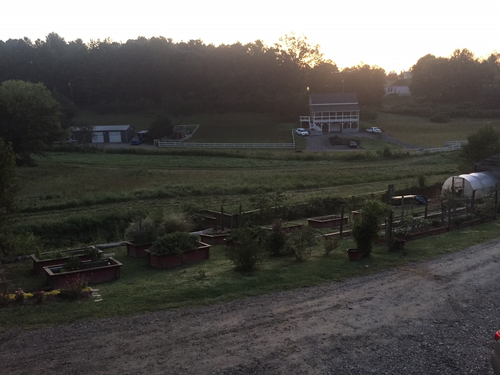Frannys sunrise 2
