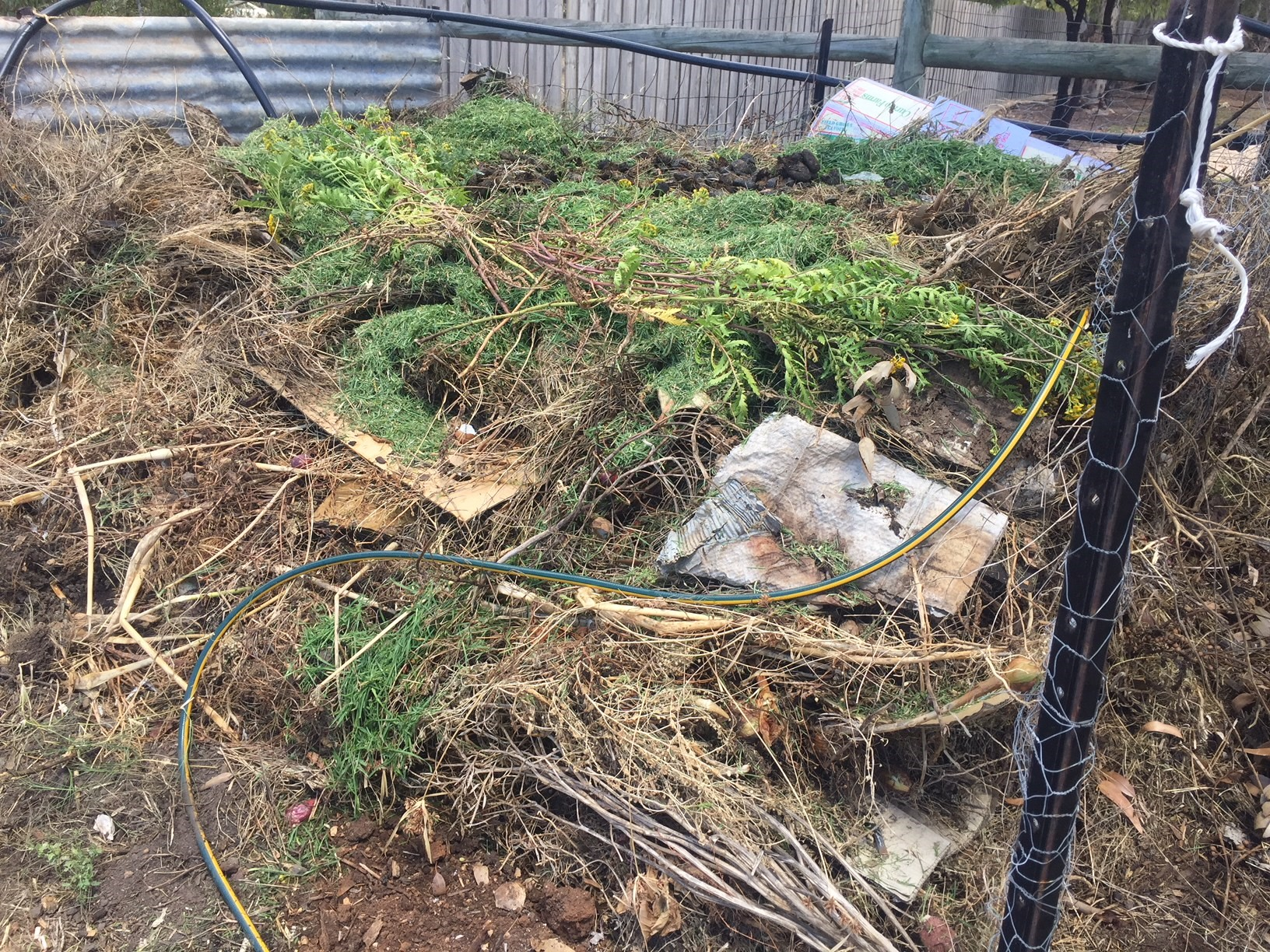 Compost – current heap