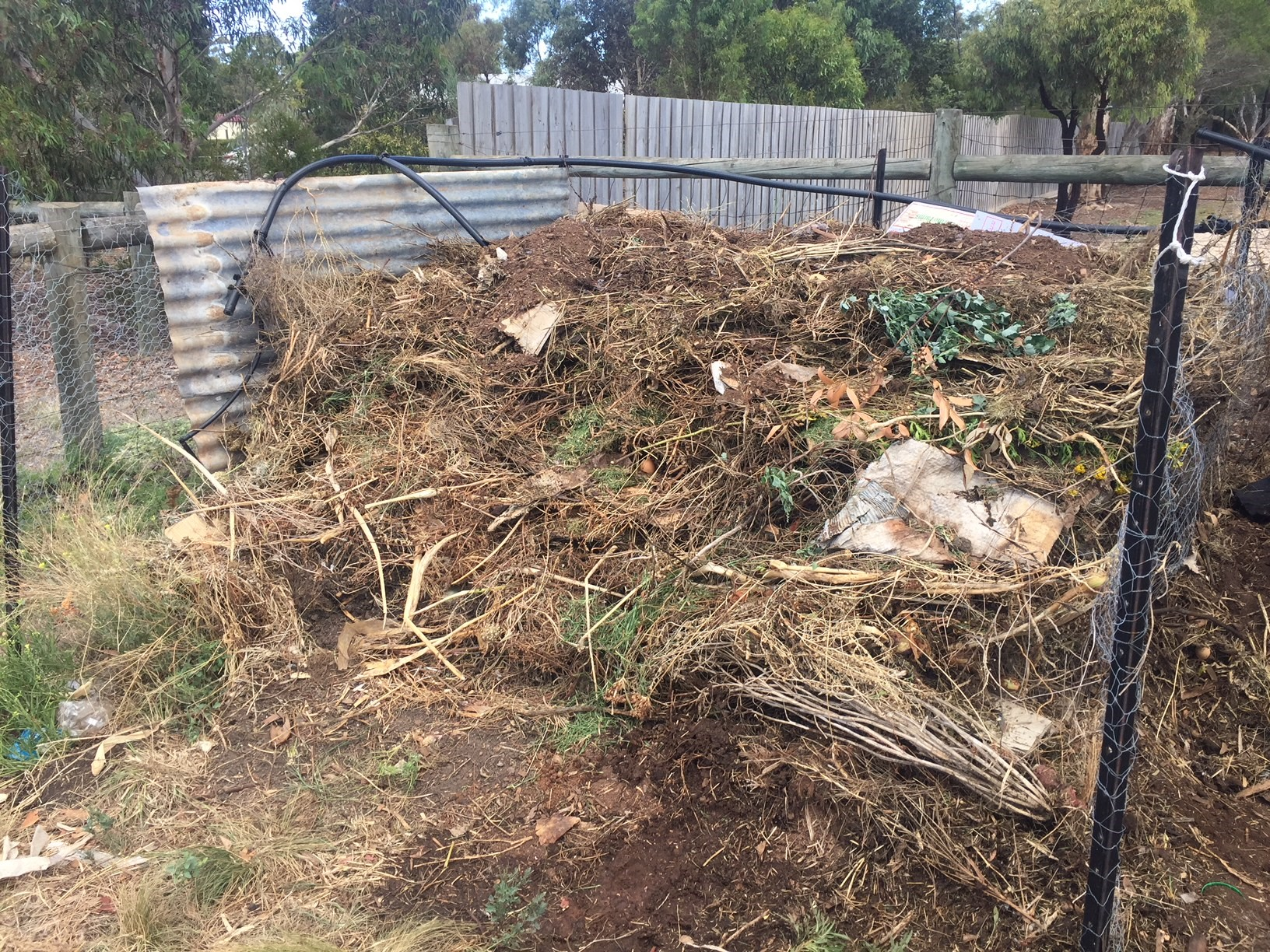 Compost – feature
