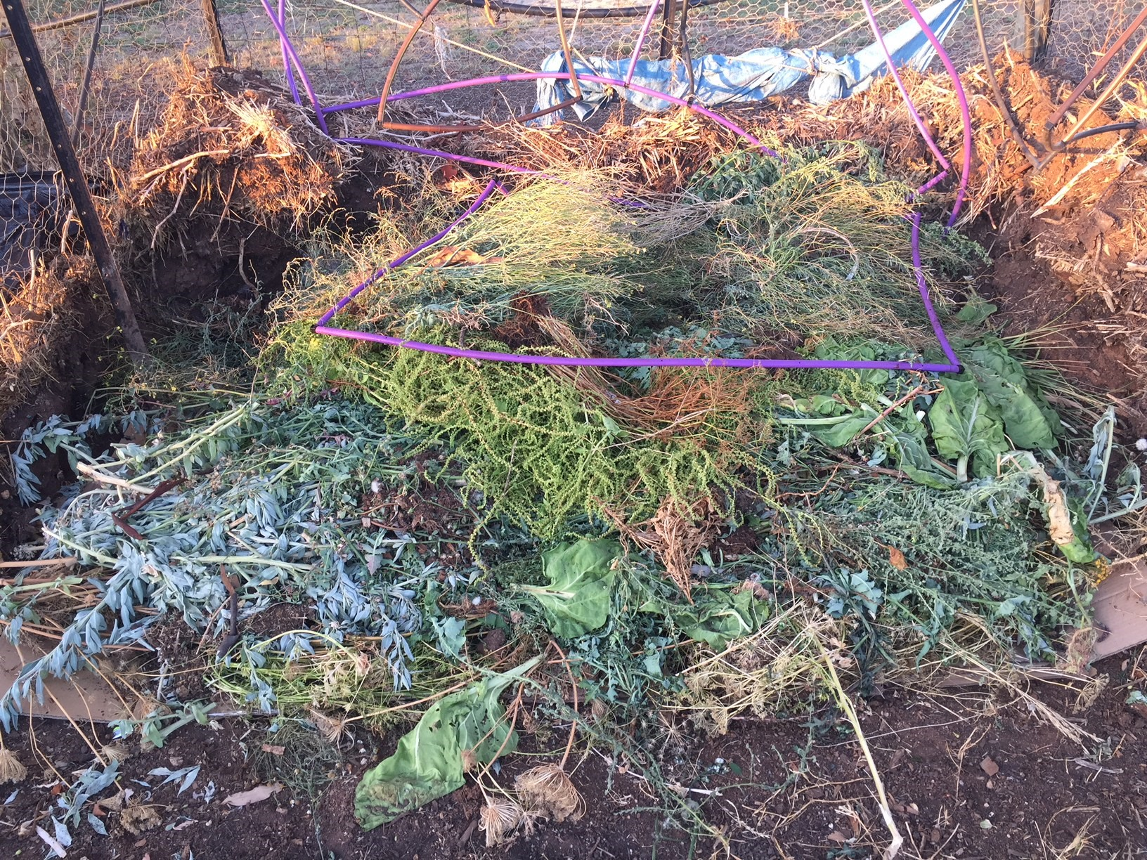 Compost – new heap with greywater