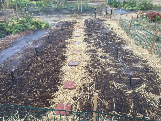 Nodig - testing irrigation