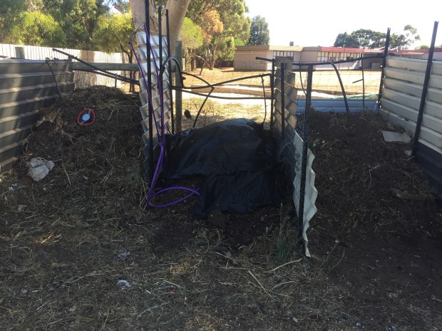 Compost3 - bins 3 to 5
