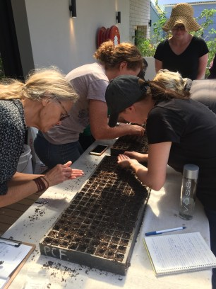 OMG - prac - seeding