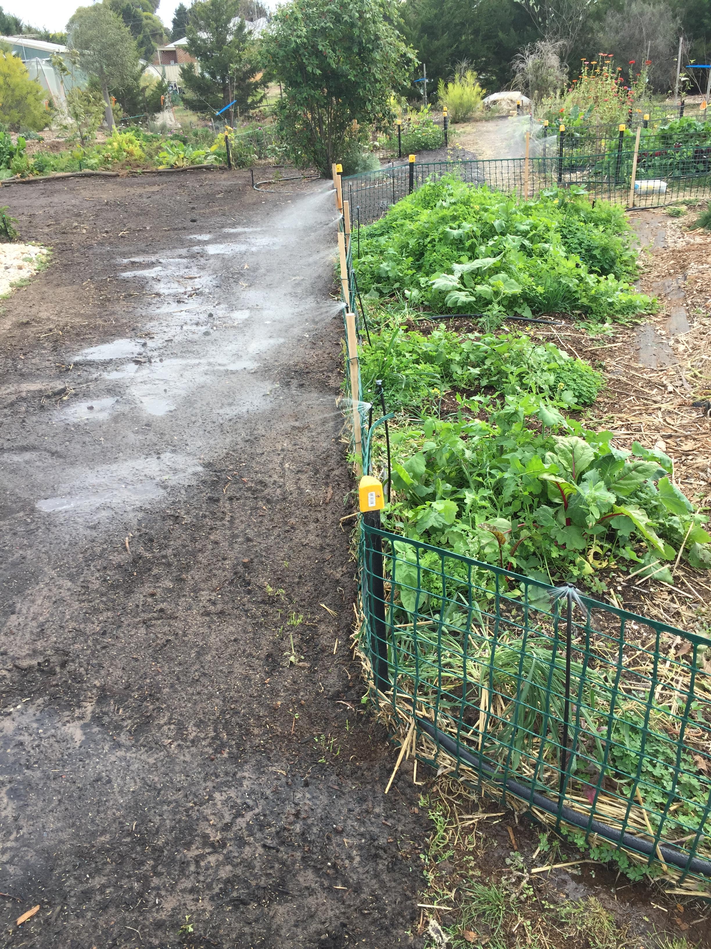 Path – irrigation
