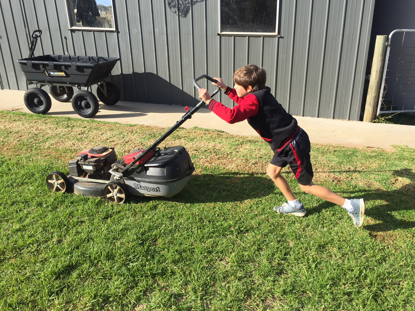 Lawn – mowing