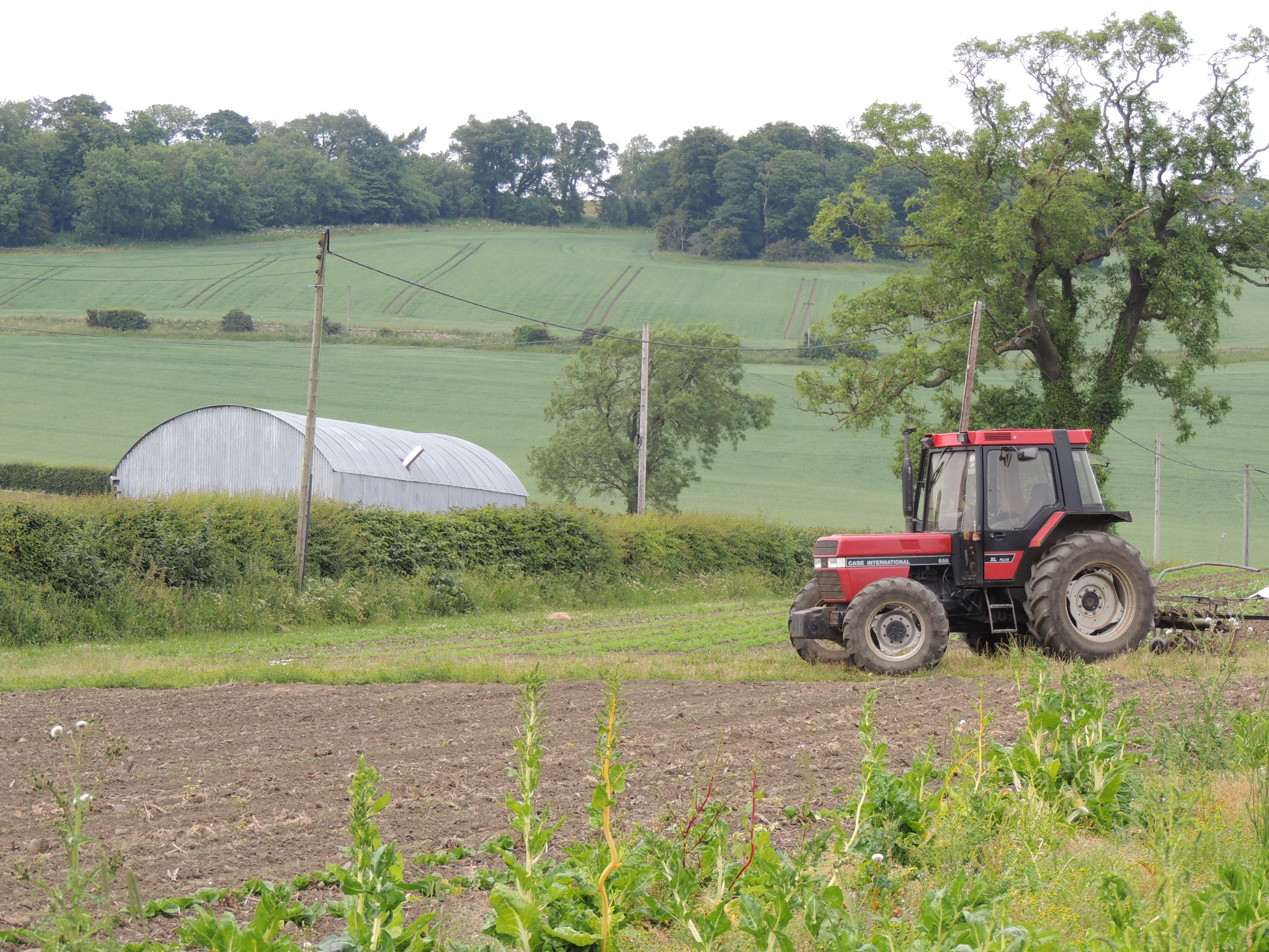 Overview with tractor