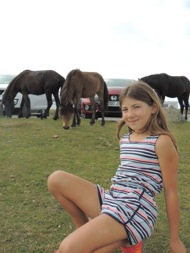 Dart - ponies 7