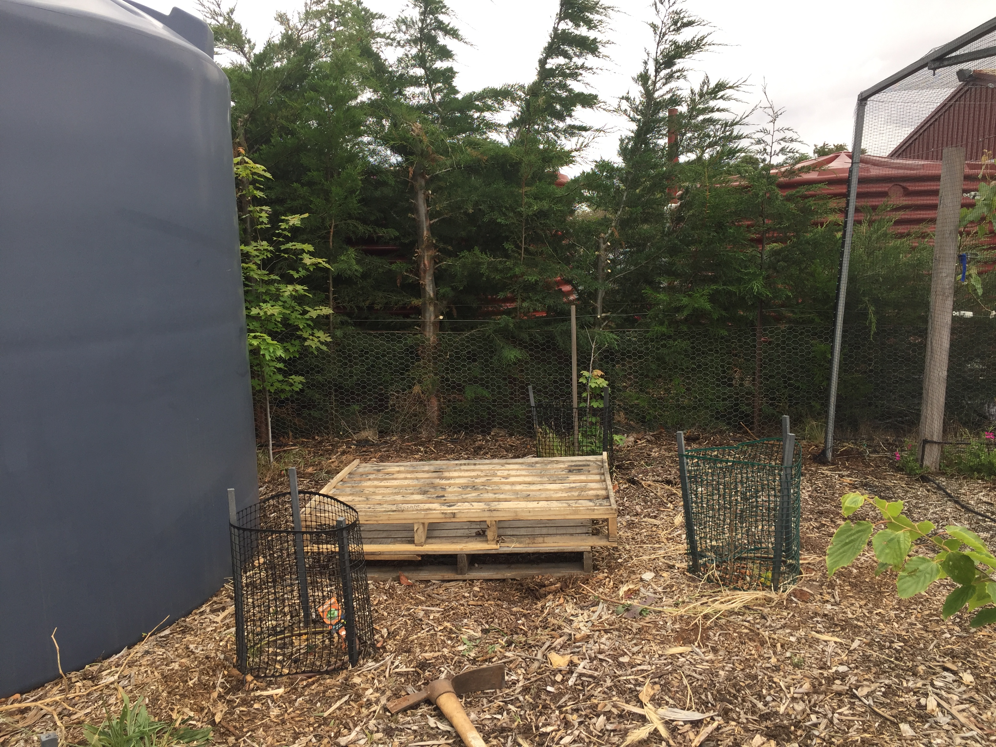 Bees – pallets