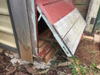 Chooks entrance broken