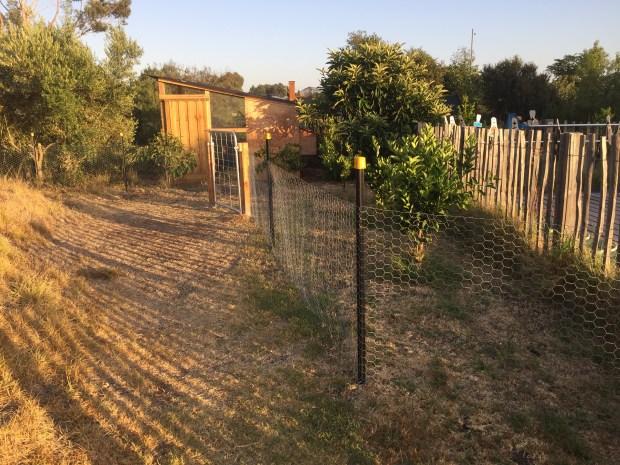 Scoop - fencing