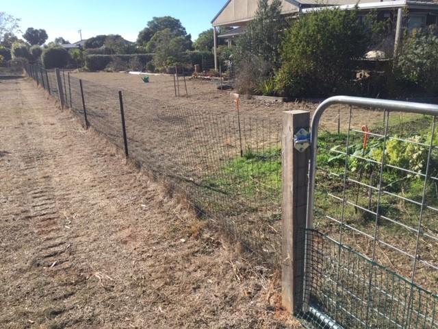 Rabbit – fence