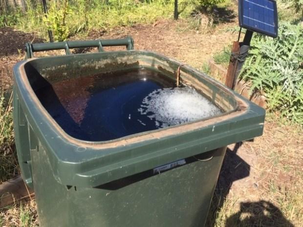 BD - compost tea
