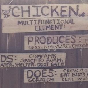 Sign - chicken
