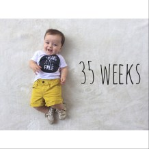 35 weeks old in sly fox threads and gap