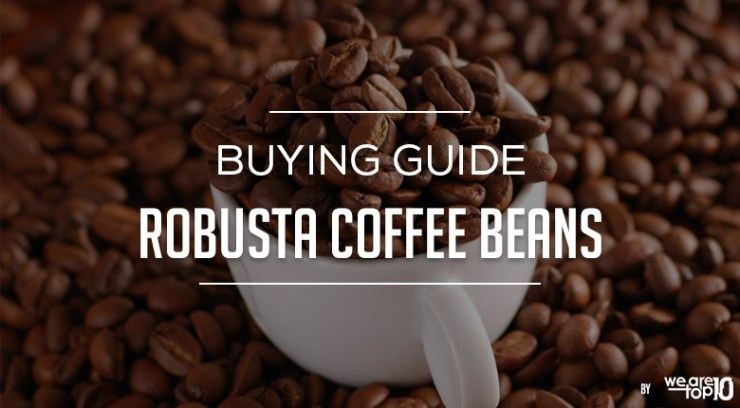 Buying Guide Robusta Coffee Beans