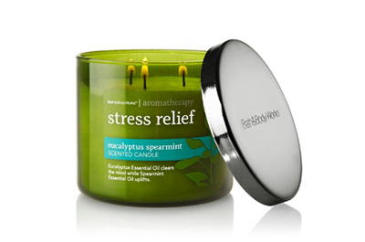 Bath and Body Works Aromatherapy Eucalyptus Spearmint Scented Candle
