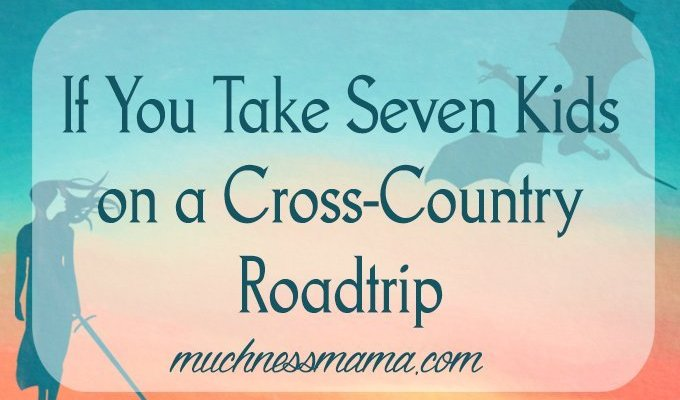 If You Take Seven Kids on a Cross Country Roadtrip