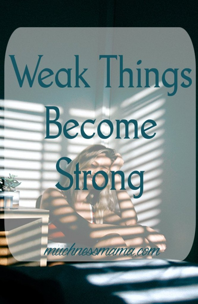 Weak Things Become Strong | muchnessmama.com | self love | make your weaknesses strengths | weak things of the world | you are unique