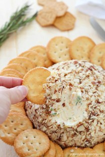 easy-cheese-ball-7