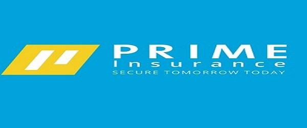 Anti-fraud Investigation Senior Officer at Prime Insurance Ltd: (Deadline 8 October 2021)