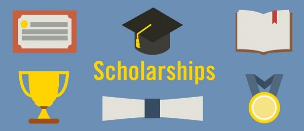 DAAD/PLAAS NELGA Scholarship 2020 for African students to study in  South Africa or in their Home country (Deadline: 30 November 2019)