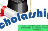 Fully Funded Scholarships in Germany 2021: (Deadline 31 May 2021)