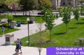 Scholarship at Wilkes University in the USA: (Deadline 1 August 2021)