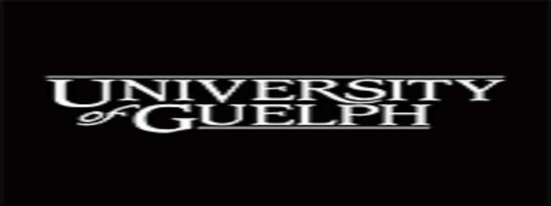 University of Guelph Canada 2021 International Undergraduate Entrance Scholarships: (Deadline Ongoing)