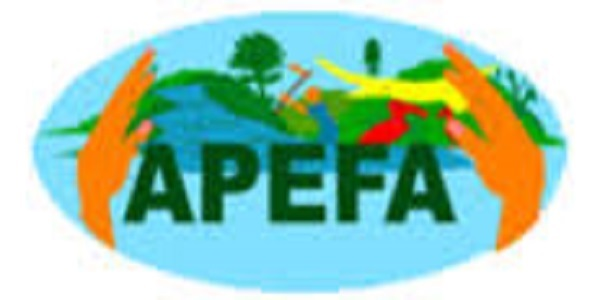 Forest Experts at Action for Environment Protection and Agriculture Sectors Promotion «APEFA»: (Deadline 15 October 2021)